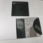 afreux-Evil Penguin Records-Gustav Mahler-3