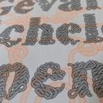 afreux-Scheld'apen-Het geval-6